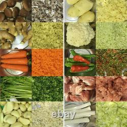 Machine Commerciale De Traitement Des Aliments De Broyeur De Légumes Électriques 110v 550w